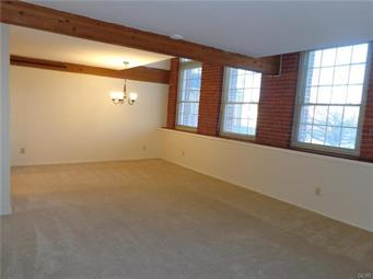 101 RACE ST APT 218, Catasauqua Borough, PA 18032 - Photo 2