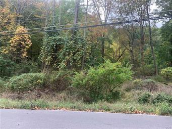 T 576 11, Pocono Twp, PA 18370 - Photo 1