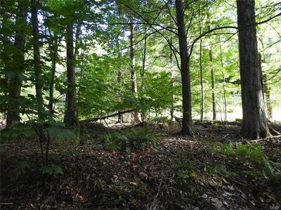 163 UPPER AL WA DA DR, Pike County, PA 18426 - Photo 1