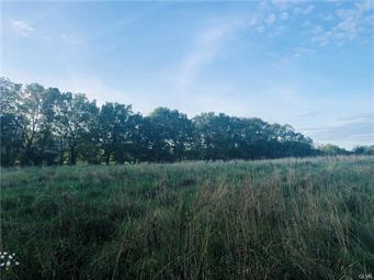 15 BACHMAN LN, Williams Twp, PA 18042 - Photo 2
