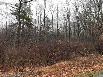 143 BLACK WALNUT LANE, Penn Forest Township, PA 18229 - Photo 1