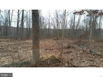 0 SWAMP CREEK ROAD, Milford Twp, PA 18073 - Photo 2