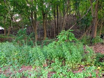 1227 4TH ST, Slatington Borough, PA 18080 - Photo 1