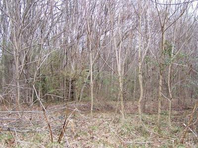 1428 RAILVIEW RD, Gladys, VA 24554 - Photo 2