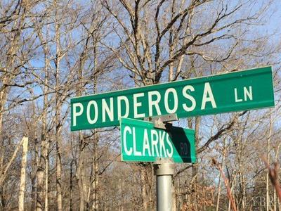 75 - 143 PONDEROSA LANE, RUSTBURG, VA 24588 - Photo 2