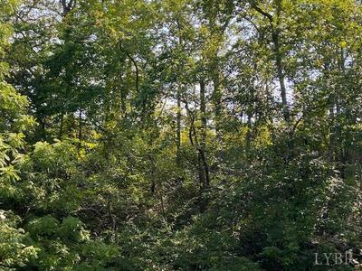 0 RED HOUSE ROAD, Appomattox, VA 24522 - Photo 2