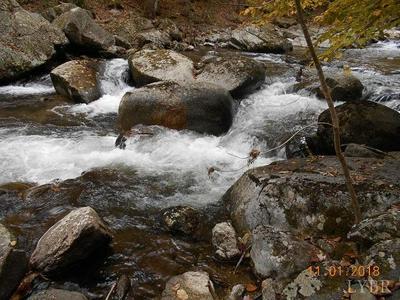 0 CRABTREE FALLS HIGHWAY, Tyro, VA 22976 - Photo 1