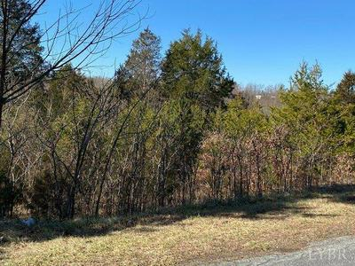 0 COUNTRY CLUB ROAD, Hurt, VA 24563 - Photo 1