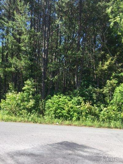 0 LOTS 35-38 LONGVIEW ROAD, Hurt, VA 24563 - Photo 2
