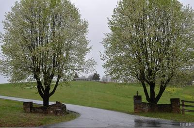 18818 WYATTS WAY, Evington, VA 24550 - Photo 1