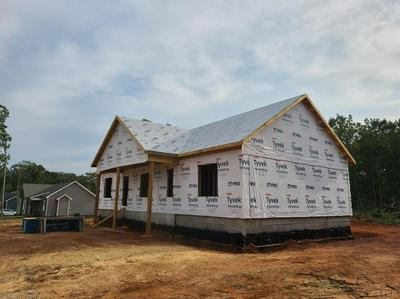 99999 STONEWALL RD., Concord, VA 24538 - Photo 1