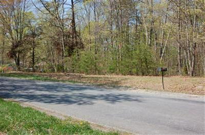 0 - LOT 2 ROCKFORD SCHOOL, Hurt, VA 24563 - Photo 1