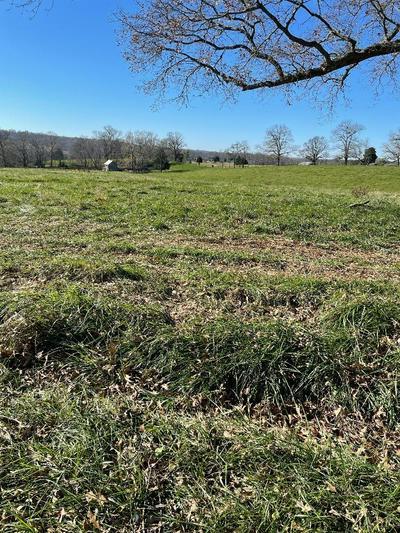 0 MEADOW DRIVE, Appomattox, VA 24522 - Photo 1