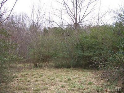 1428 RAILVIEW RD, Gladys, VA 24554 - Photo 1