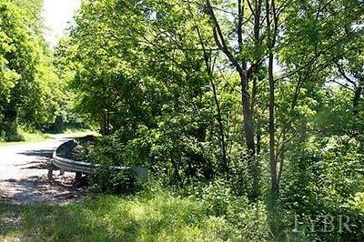 0 COOL SPRINGS ROAD, Thaxton, VA 24174 - Photo 1