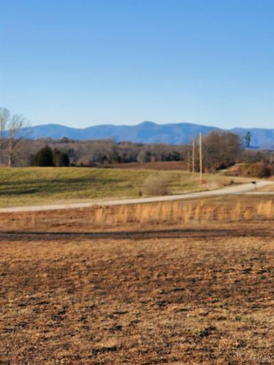 0 LOT 2 ROCKY CREEK LANE, Gladstone, VA 24553 - Photo 2