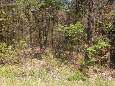 0 LOT A LONGVIEW ROAD, Hurt, VA 24563 - Photo 2