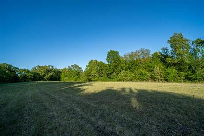 OLD SOLOMON MILL RD, Somerville, TN 38068 - Photo 1