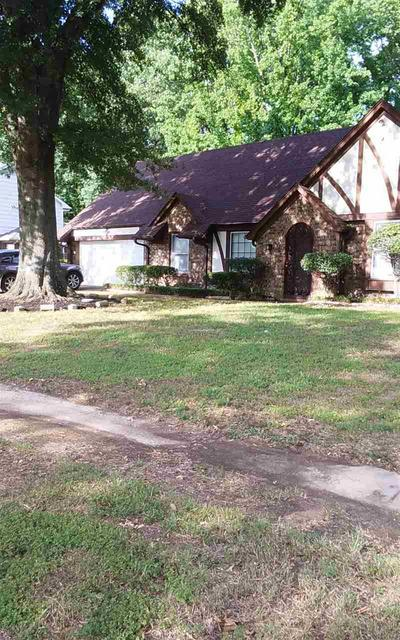 4768 HORNSBY DR, Memphis, TN 38116 - Photo 2