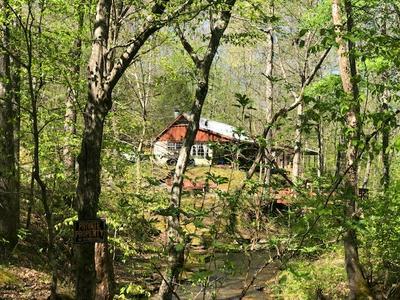 8285 FLAT GAP CREEK RD, Olivehill, TN 38475 - Photo 1