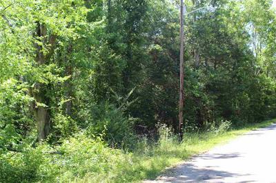 0 BLANTON RD, Adamsville, TN 38310 - Photo 2