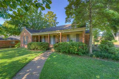 905 PARK VALLEY RD, Memphis, TN 38119 - Photo 2