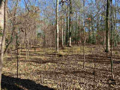0 JUNE DR, Unincorporated, TN 38068 - Photo 2