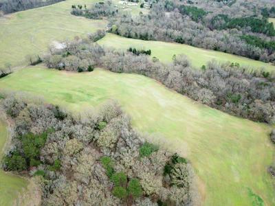 50 OLD JACKSON RD, Whiteville, TN 38075 - Photo 1