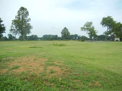LOT #47 ARNOLD LN, Savannah, TN 38372 - Photo 1