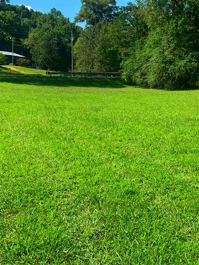 5439 BEECH CREEK RD, Waynesboro, TN 38485 - Photo 2