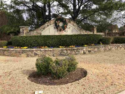 1729 NAPIER WOODS DR, Collierville, TN 38017 - Photo 2