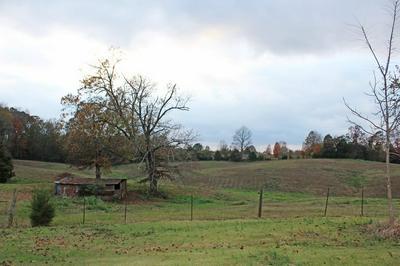 2562 MOUNT VINSON RD, Stantonville, TN 38379 - Photo 2