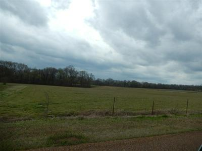 0 MONROE RD, Whiteville, TN 38075 - Photo 1