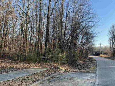 12599 HARRELL RD, Arlington, TN 38002 - Photo 2