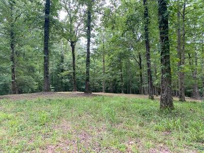 LOT 8 & 9 DRIFTWOOD RD, Counce, TN 38326 - Photo 1