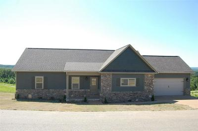465 TURKEY KNOB LN, COUNCE, TN 38326 - Photo 1