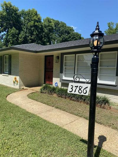 3786 MAULDEN DR, Memphis, TN 38116 - Photo 2