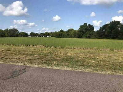 OAK GROVE RD, Savannah, TN 38372 - Photo 1