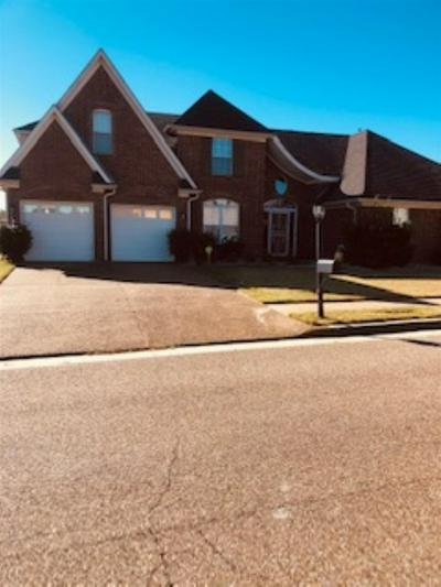 7469 MORGAN HOUSE DR, Unincorporated, TN 38125 - Photo 1