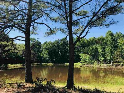 0 BEAUTY HILL RD, Adamsville, TN 38310 - Photo 1
