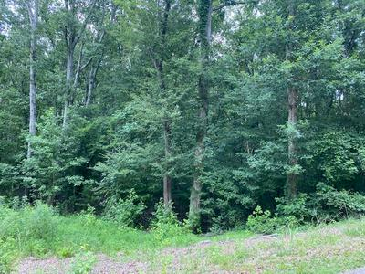LOT 10-11 DRIFTWOOD RD, Counce, TN 38326 - Photo 1