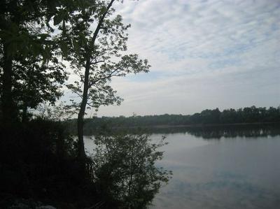 1 CATFISH LN, Crump, TN 38327 - Photo 2