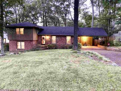 5340 KNOLLWOOD DR, Memphis, TN 38119 - Photo 1
