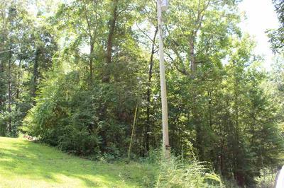 0 CRUMP LANDING RD, Crump, TN 38327 - Photo 2