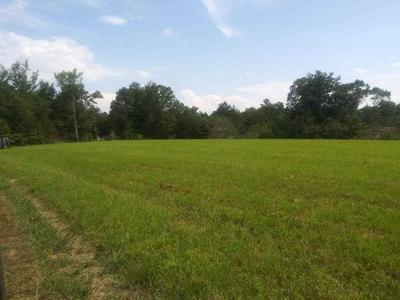 380 BETHLEHEM RD, Adamsville, TN 38310 - Photo 2