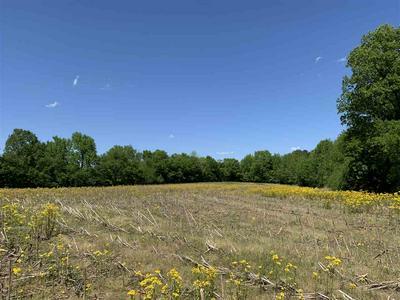 4545 WHITEVILLE NEWCASTLE RD, Whiteville, TN 38075 - Photo 1