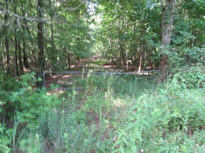 PRATT LN, Shiloh, TN 38376 - Photo 1