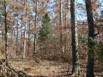 0 LIBERTY RD, Scotts Hill, TN 38374 - Photo 1