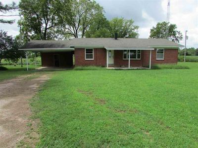 1039 MICHIE PEBBLE HILL RD, Stantonville, TN 38379 - Photo 1