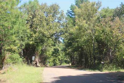 114 BROWNLEE RD, Sarah, MS 38665 - Photo 1